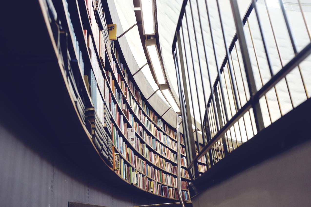 Читатель и Интернет: Основы формирования нового информационного общества