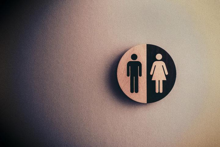 Первитская А.М. Личностные и социально-психологические особенности девушек, самопрезентирующих кросс-пол в социальных сетях