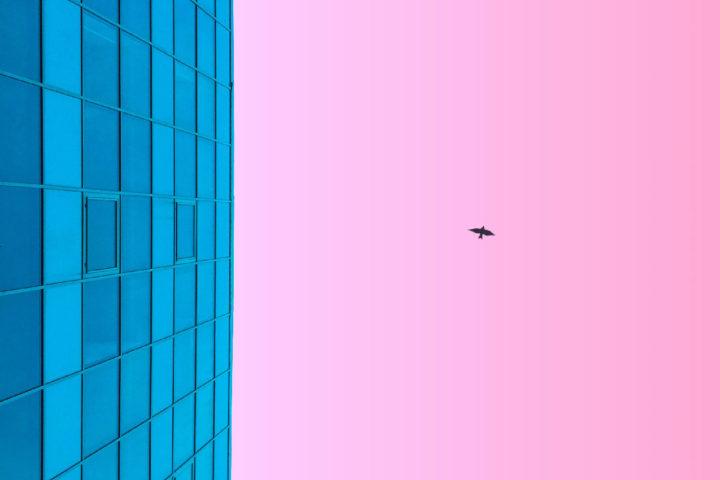 Шаляпин А.А., Данина М.М. Исследования эффекта присутствия в виртуальной реальности: современное состояние и перспективы