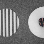 Бовина И.Б., Дворянчиков Н.В. Поведение онлайн и офлайн: две реальности или одна?